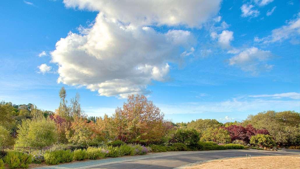 Highlands Los Altos Real Estate