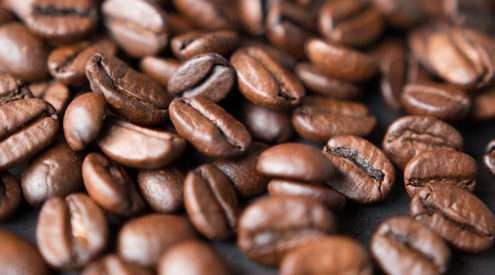 coffee-mark-daynes-35088