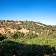 5 Sunhill, Portola Valley